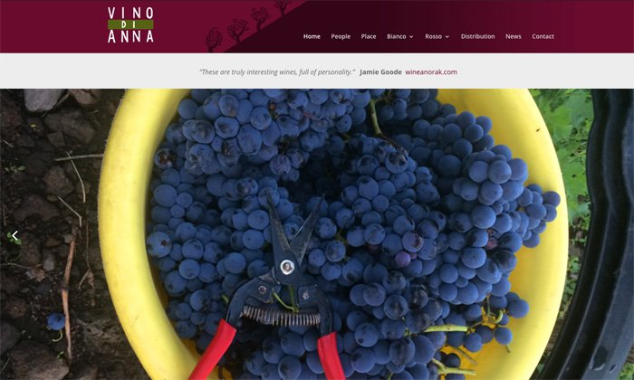 Redesign of website for vino di anna
